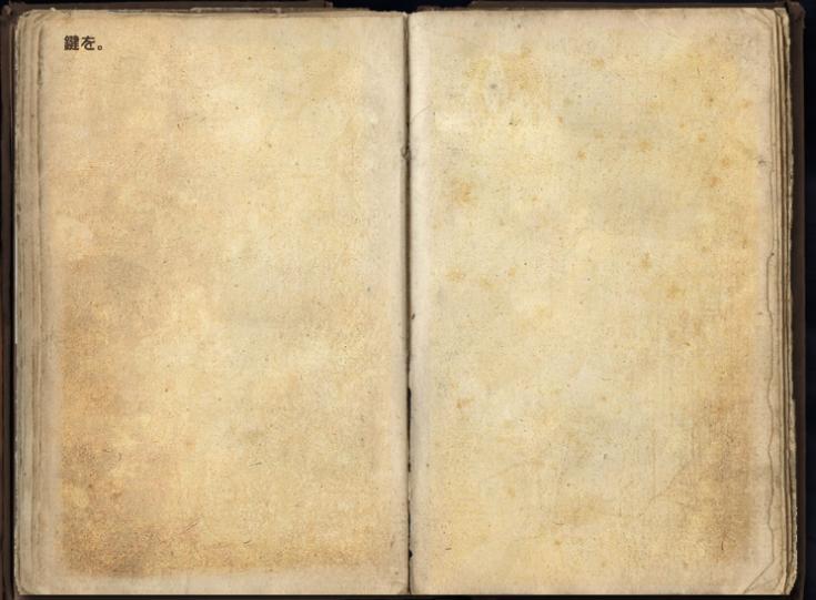 ツォナ・エイの日記